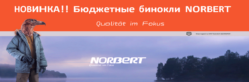norbert_new